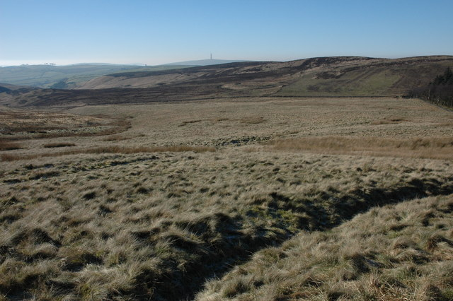 Moorland above Macclesfield Forest