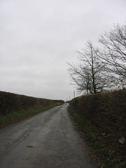 The road between Parcau Farm and Stembridge Farm