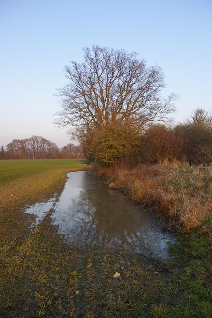 Flooded field edge, Wigmore Moor