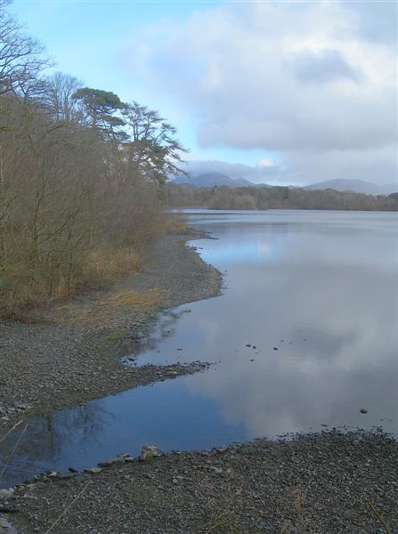 Loch Ballygrant Shore