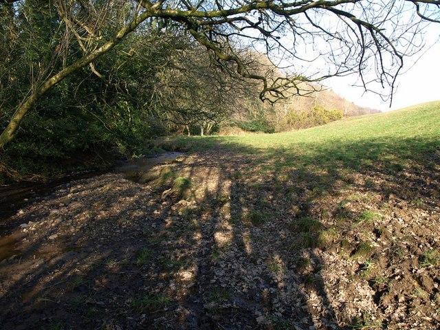 Stream and muddy field edge