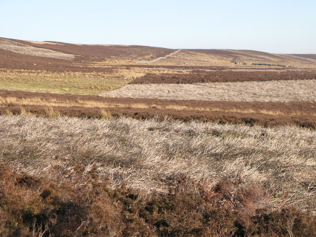 The southern slopes of Round Hill