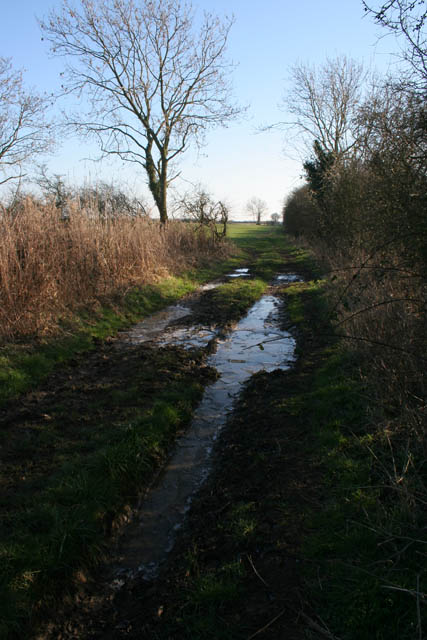 Farm track near Stonesby