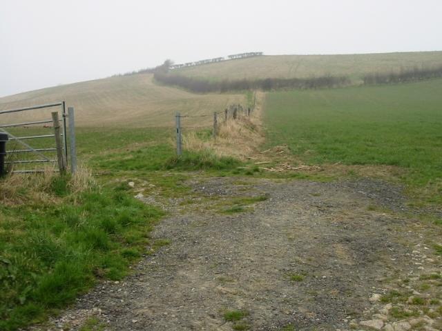 Farmland opposite Priston New Farm