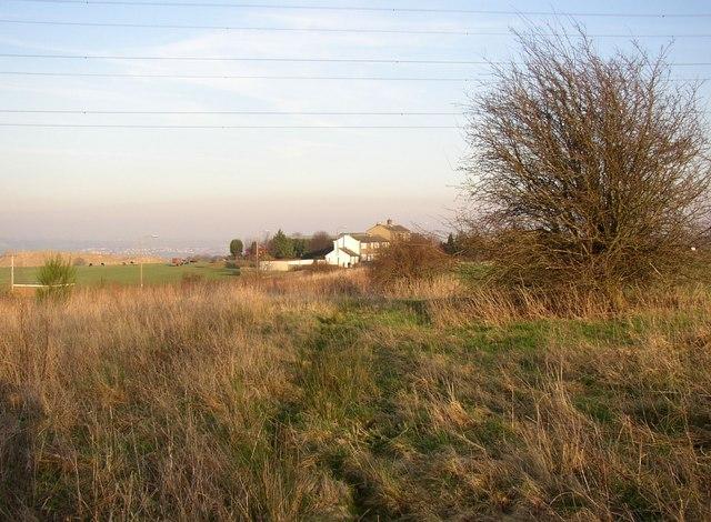 Rough field margin, Dewsbury Road, Rastrick