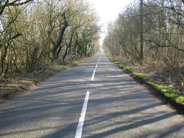 Worplesdon: Burdenshott Road