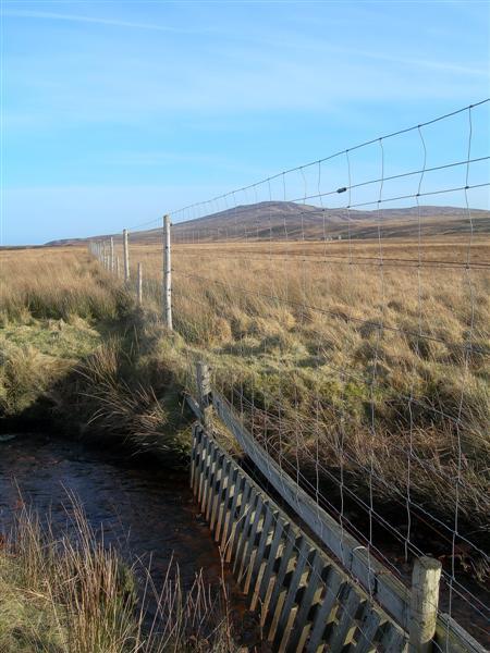 Water Gate & Deer Fence