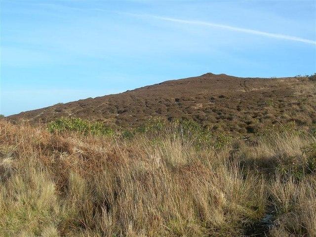 Heathery Hillside Above Gortantaiod