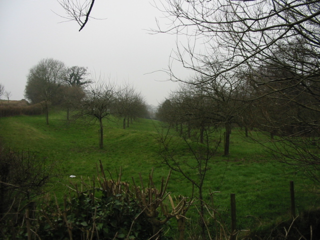 Orchard to the N of Bathford Hill road