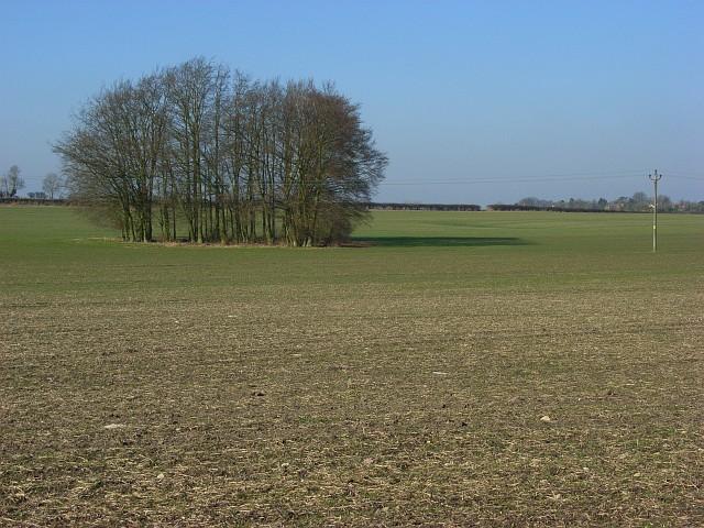 Farmland, Chiseldon