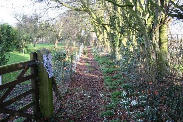 Greetham footpath