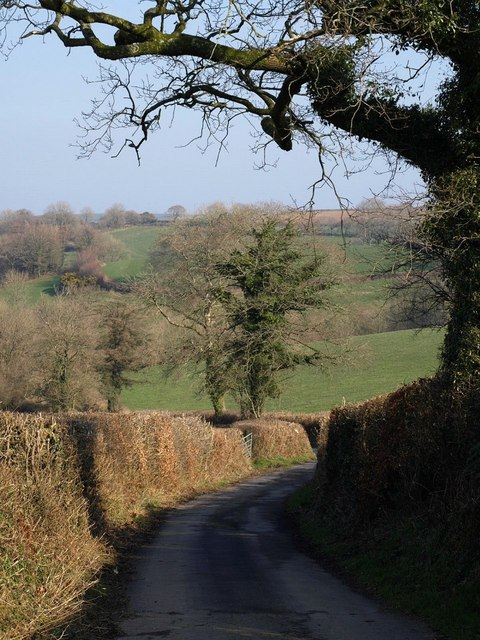 Lane to Langtree Common