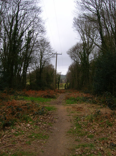 Footpath, Freehold Wood