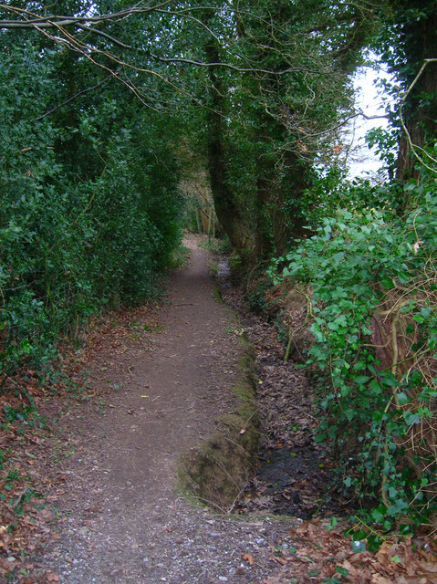 Footpath to Whydown