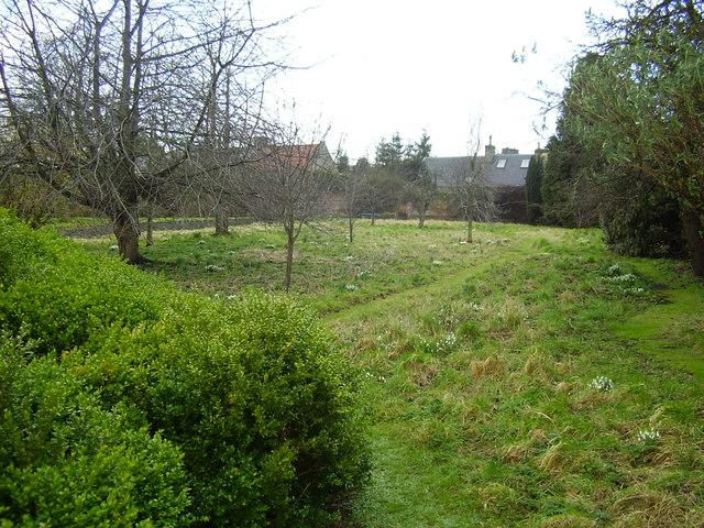 The Meadow Garden - Haddington