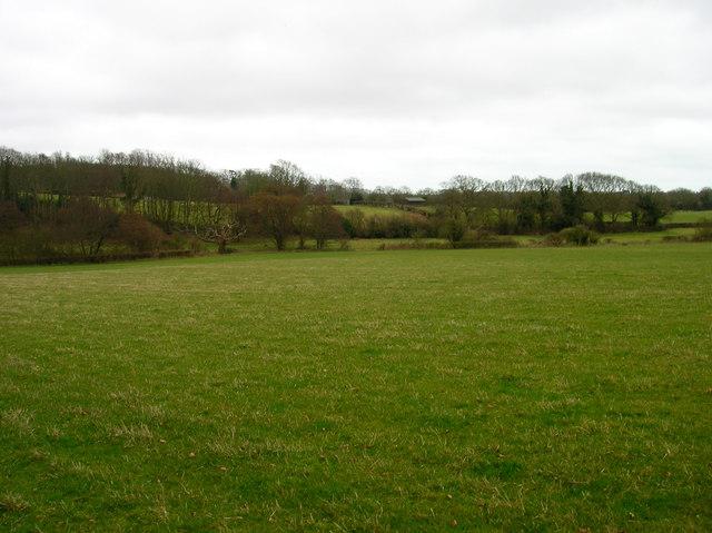 Fields near Holmes Farm