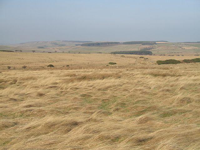 Amersidelaw Moor