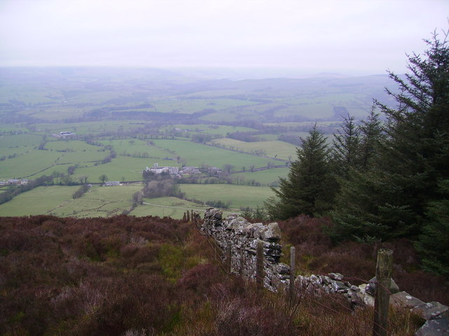 Wall, Longridge Fell
