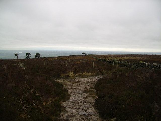 Descending Longridge Fell