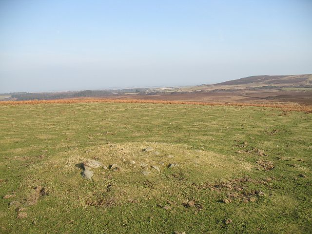 Burial mound, Whitehill Head