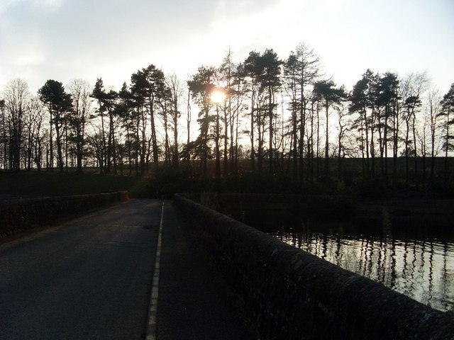 Tree-lined hill by Craigmaddie Reservoir