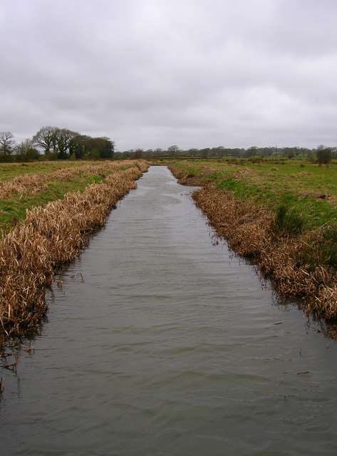 Picknill Green Stream