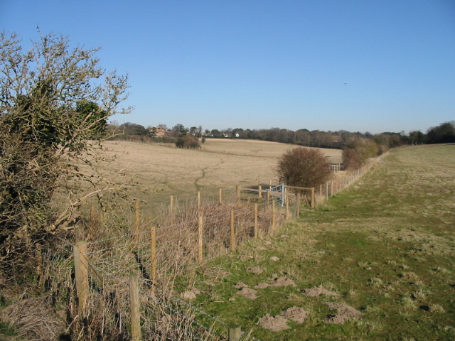 Looking N from the Deal Road towards Northbourne