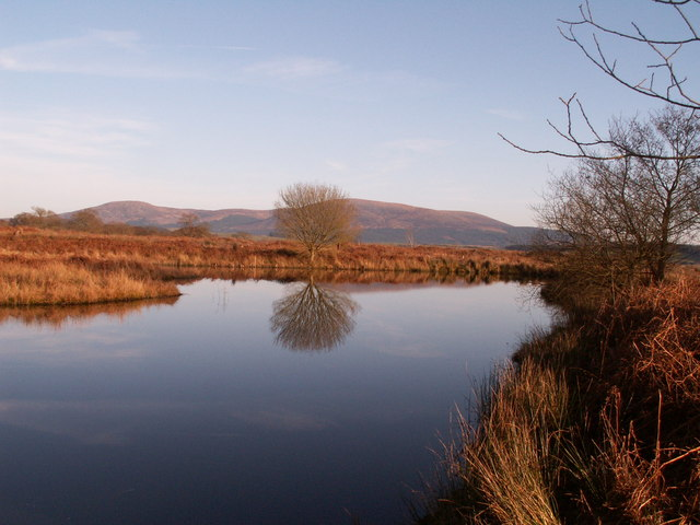 Small pond in Knockman Wood looking towards Cairnsmore of Fleet