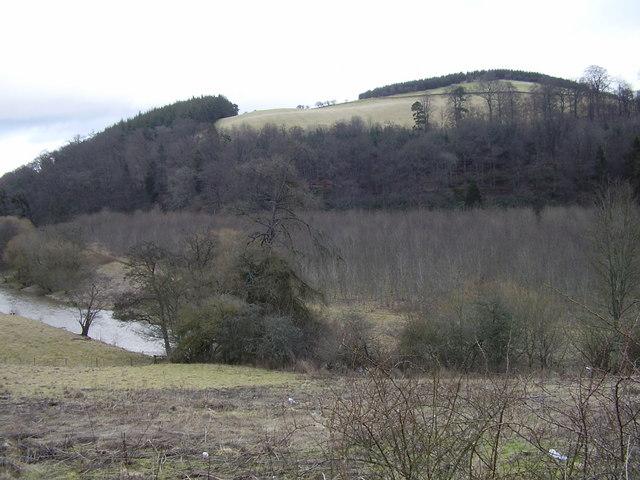 The White Hill, Scottish Borders.