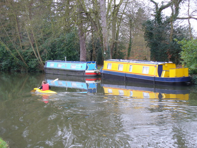 River Wey Navigation by Cartbridge