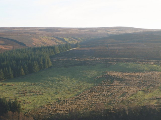 The cleugh of Norham Burn