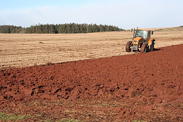 Ploughing the Red Earth