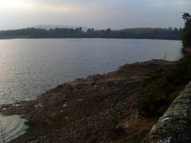"""Shore"" of Mugdock Reservoir"