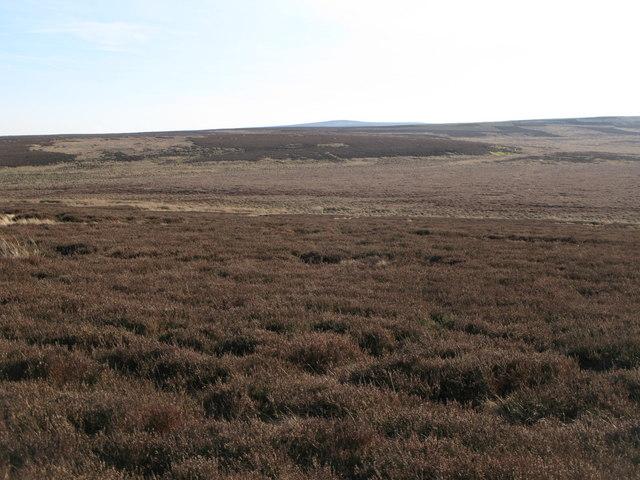 The Foumart Hills (3)