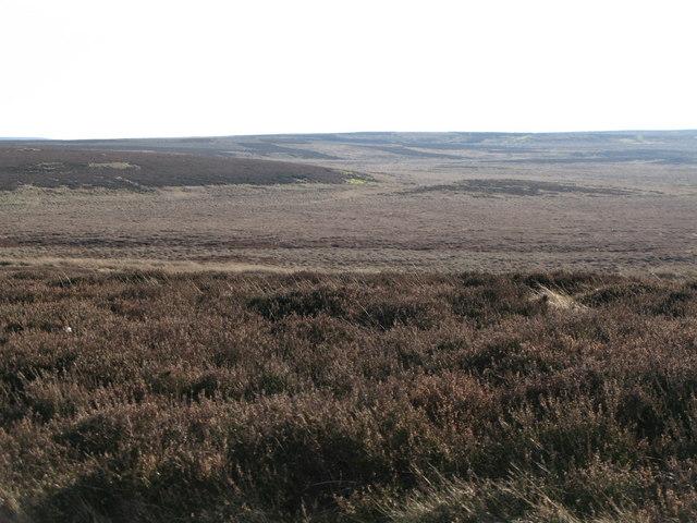 The Foumart Hills (4)