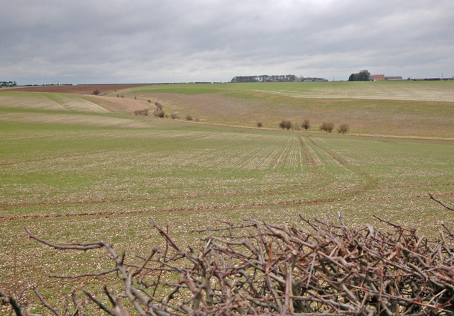 South of Samples Farm