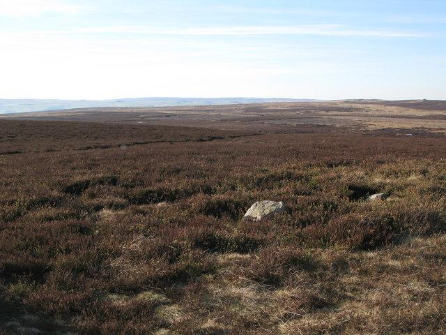 Eshells Moor (2)