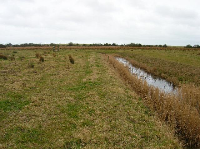 Drainage Ditch, Hooe Level