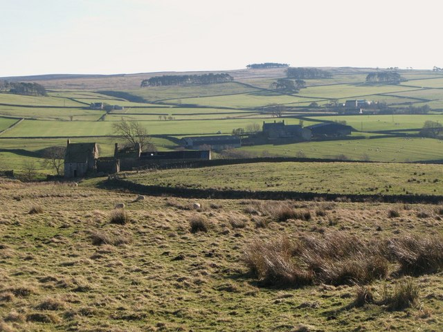 Pastures above Moor House
