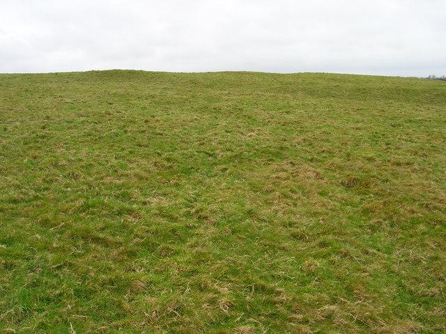 Chapel Field