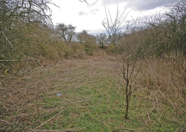 Double Dike, near Little Weighton