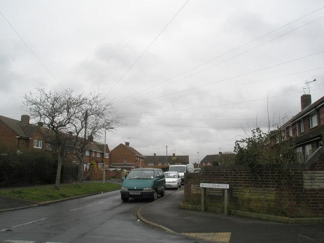 Bransgore Avenue