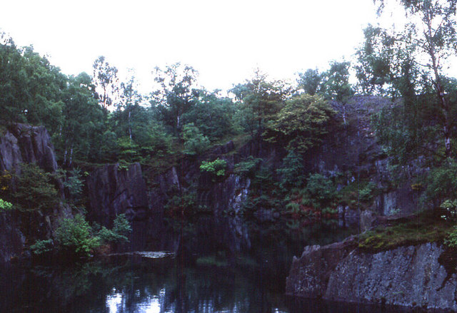 Quarry in Swithland Wood