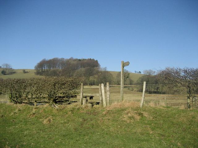 Signpost near Fober Farm