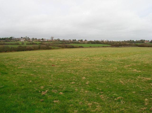 Field near Barnhorn