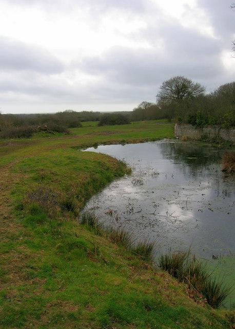 Pond, Barnhorne Manor Farm