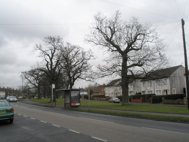 Purbrook Way bus stop
