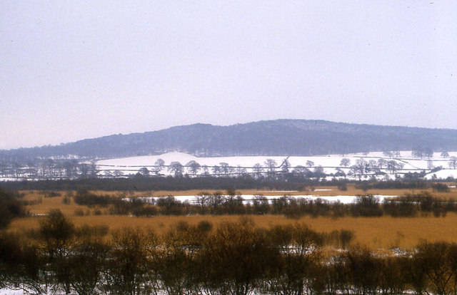 Leighton Moss in snow