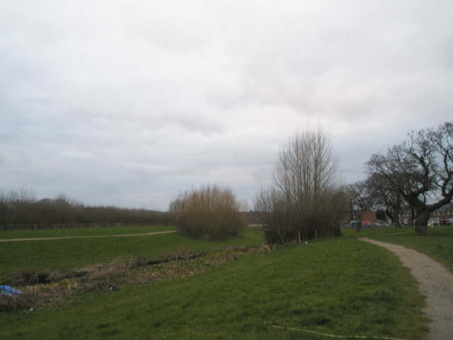 Stockheath Common from Botley Drive end
