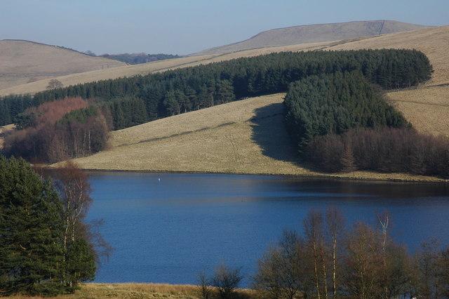 Forestry above Errwood Reservoir